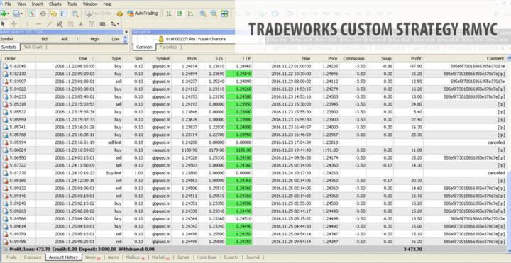 custom-strategy-tradeworks-rmyc-02